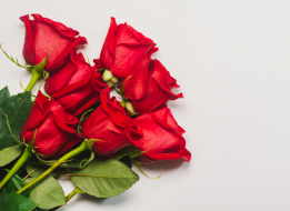 Media Docena de Rosas